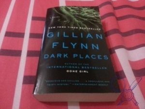 My journey through Gillian Flynn's books continues...